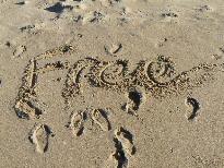creative intelligence sand free
