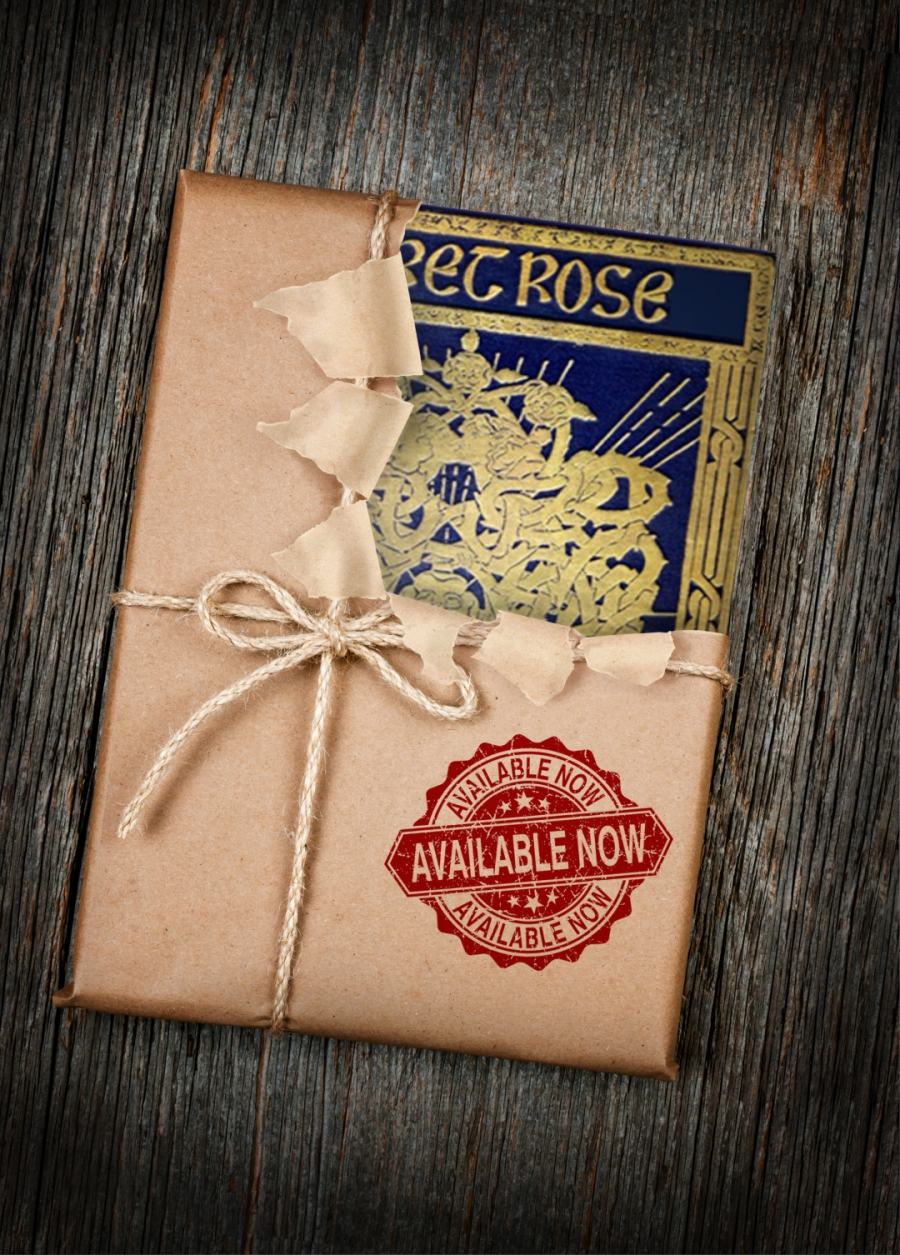 Secret Rose Special Edition Book Incentive