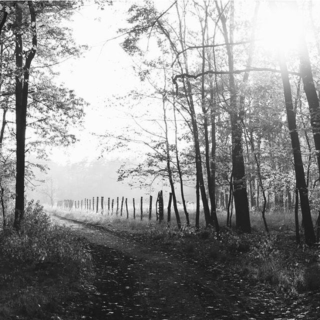 Poem of the Week: Autumn Dawn